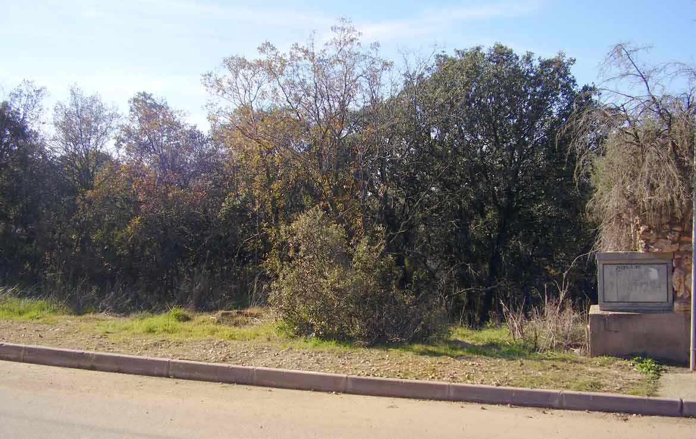 51F en venta parcela barata en Valdeaveruelo Guadalajara