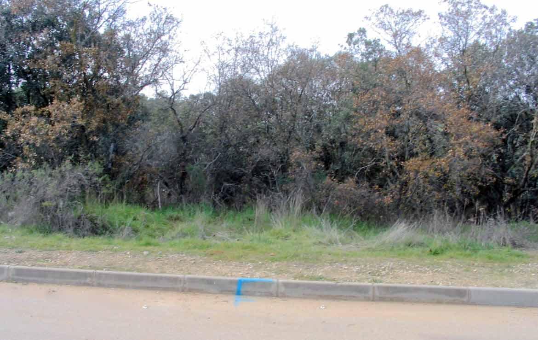 51F en venta terrenos financiados en Sotolargo Guadalajara