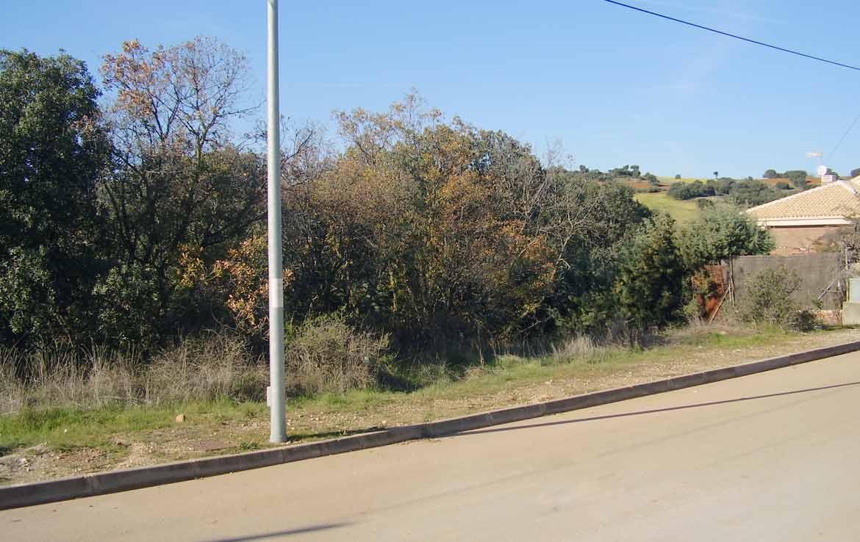 51F venta de parcelas en oferta en Valdeaveruelo Guadalajara