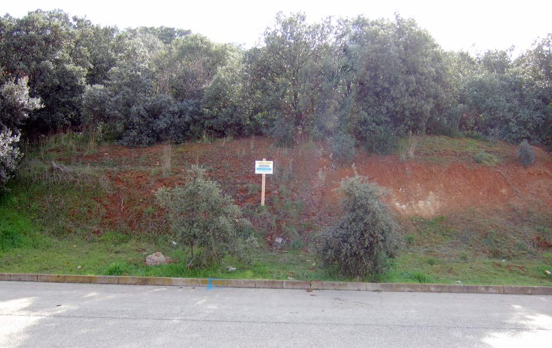 92B compra de terreno en oferta en Valdeaveruelo Guadalajara